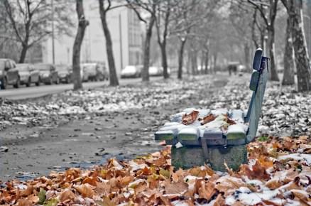 Herbst/Winter